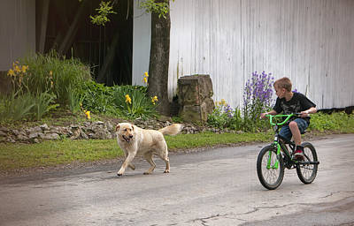 Lucky Dogs Wall Art - Photograph - A Boy And His Dog by Phyllis Taylor