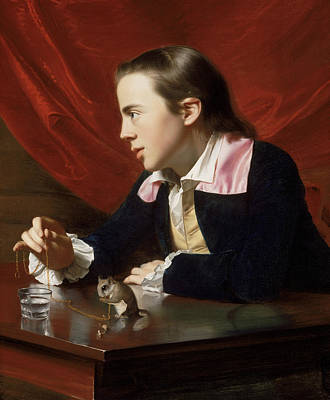 Desk Painting - A Boy With A Flying Squirrel  by John Singleton Copley