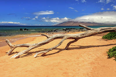 Photograph - A Branch On Keawakapu Beach by James Eddy