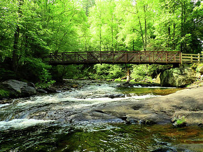 Photograph - A Bridge Spans Over It by Laura Ragland