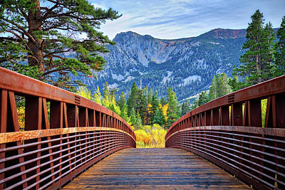 Photograph - A Bridge To Beauty by Lynn Bauer
