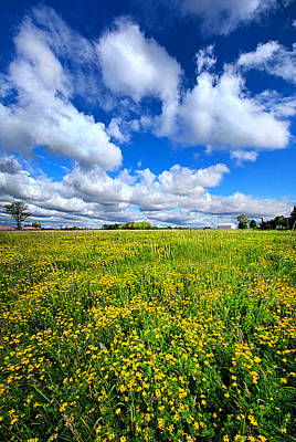 Photograph - A Bright Bright Sunshiny Day by Phil Koch