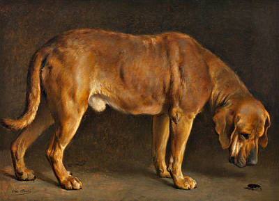 Sniffing Painting - A Broholmer Dog Looking At A Stag Beetle by Otto Bache