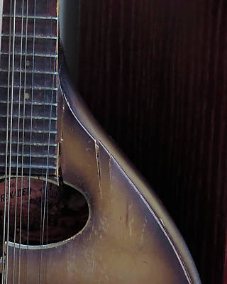 Jodi Diliberto Royalty-Free and Rights-Managed Images - A Broken and Cherished Mandolin by Jodi DiLiberto
