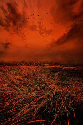 Photograph - A Broken Promise by Phil Koch
