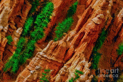 Photograph - A Bryce Geological Treasures  by Blake Richards