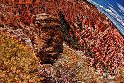Photograph - A Bryce Point Rock by Blake Richards