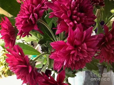 Photograph - A Bunch Of Red Dahlias by Joan-Violet Stretch