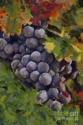 Still Life Painting - A Bunch Of Refosco by Dragica  Micki Fortuna