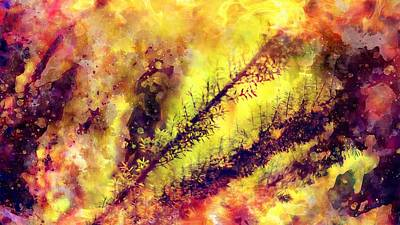 Digital Art - A Burning Bush by Payet Emmanuel