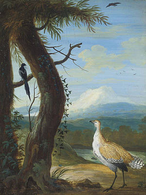Magpies Drawing - A Bustard And A Magpie In An Exotic Landscape by Circle of Christoph Ludwig Agricola