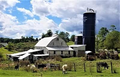 Photograph - A Busy Farm by Jim Harris