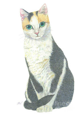 Painting - A Calico Cat by Jingfen Hwu
