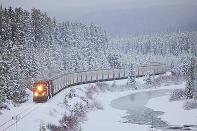 Forest Photograph - A Canadian Pacific Train Travels Along by Chris Bolin
