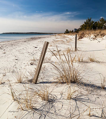 Photograph - A Cape Cod Paradise by Michelle Wiarda