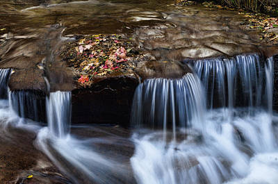 Photograph - A Cascade Of Fall Colors  by Saija  Lehtonen