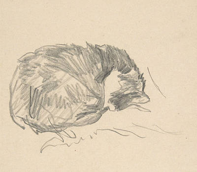 Drawing - A Cat Curled Up, Sleeping by Edouard Manet