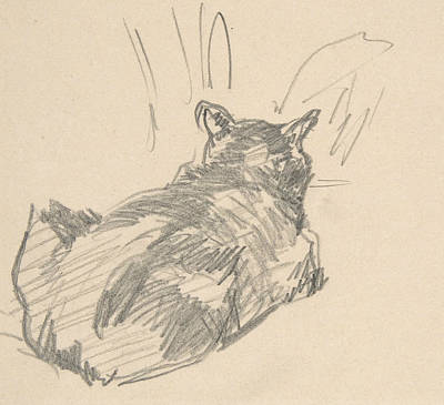 Drawing - A Cat Resting On All Fours, Seen From Behind by Edouard Manet