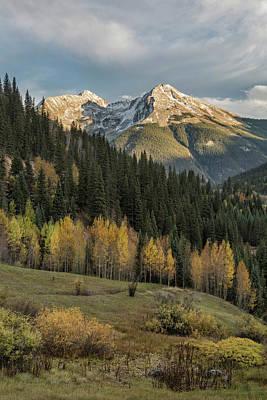 Photograph - A Change Of Seasons by Denise Bush