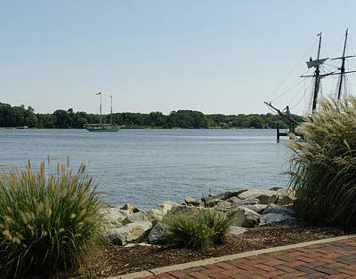 Photograph - A Chester River View by SG Atkinson