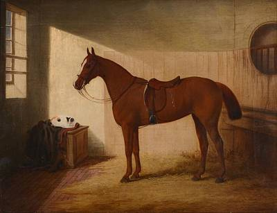 A Chestnut Horse In A Stable Art Print