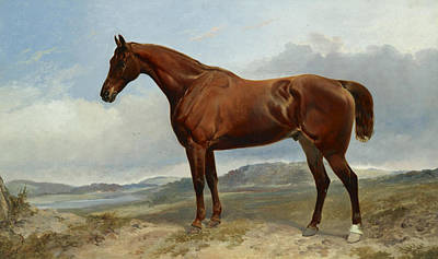 Painting - A Chestnut Hunter In A Landscape by Richard Ansdell