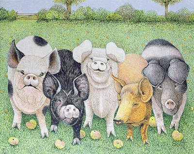 Pig Drawing - A Chorus Line by Pat Scott
