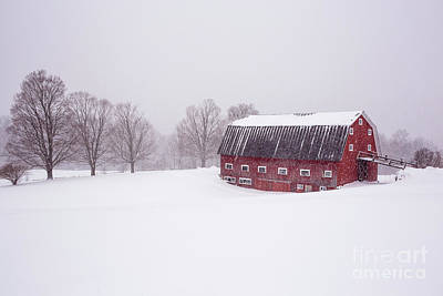 Photograph - A Classic New England Red Cow Barn In A Blizzard by Edward Fielding