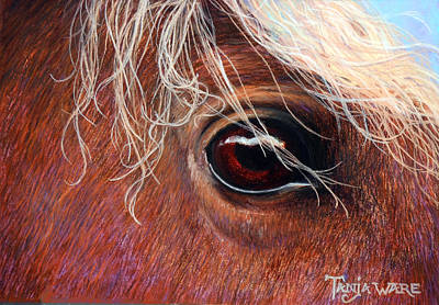 Sorrel Horse Painting - A Closer Look by Tanja Ware