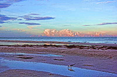 Photograph - A Coastal Morning by HH Photography of Florida