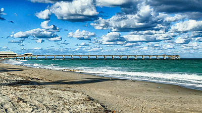 A Cold Day In Florida 62f Art Print by Dieter Lesche