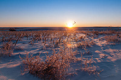 Art Print featuring the photograph A Cold December Morning by Monte Stevens