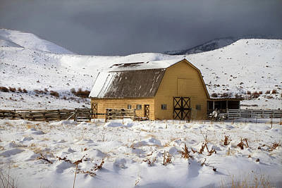 Verdi Photograph - A Cold Winters Day by Donna Kennedy