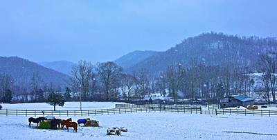 Photograph - A Cold Winters Day by Tracy Rice Frame Of Mind