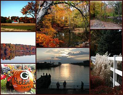 Photograph - A Collage Of Autumn by Kay Novy