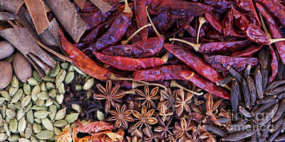 Photograph - A Collection Of Spices by Tim Gainey