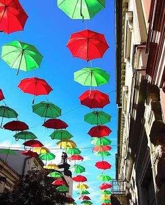 Photograph - A Colorful Day by Vesna Martinjak