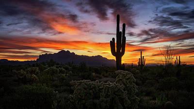 Photograph - A Colorful Desert Morning  by Saija Lehtonen