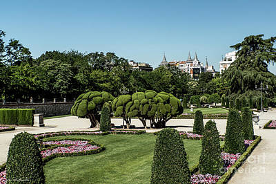 Photograph - Colorfull El Retiro Park by Arik Baltinester