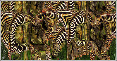 Photograph - A Confusion Of Zebras by Wayne King