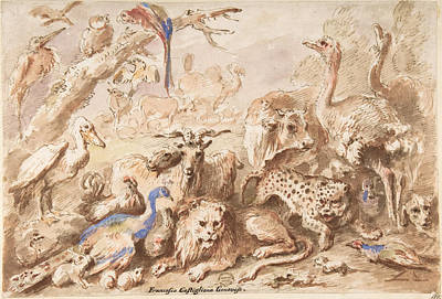 Drawing - A Congress Of Animals by Giovanni Francesco Castiglione