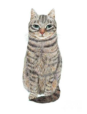 Drawing - A Cool Tabby by Jingfen Hwu