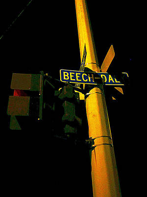 Photograph - A Corner Of Beech Daly by Guy Ricketts