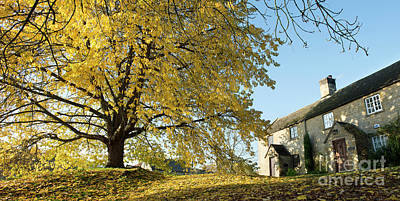 Photograph - A Cotswold Autumn  by Tim Gainey