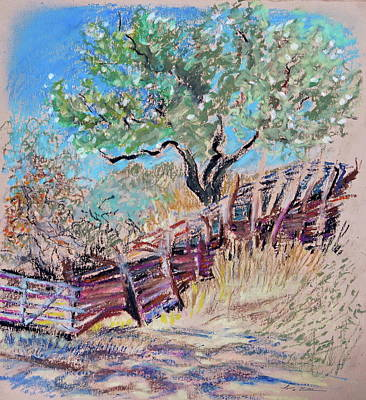 Fence Drawing - A Country Corral by Bonnie See