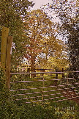 Photograph - A Country Gate by Andy Thompson