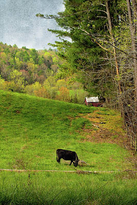 Photograph - A Country Morning by Mike Eingle