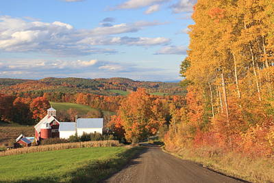 Photograph - A Country Road Barnet Vermont by John Burk