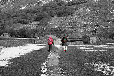 Dale Photograph - A Country Stroll by Nichola Denny