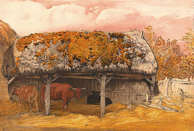 A Cow With A Mossy Roof Art Print by Mountain Dreams